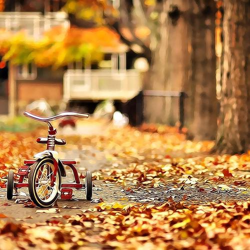 Mini bicycle with autumn leaves