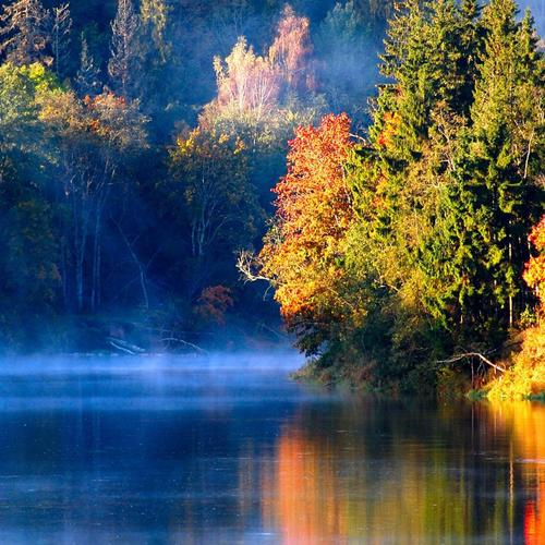 Misty river in autumn in Latvia wallpaper