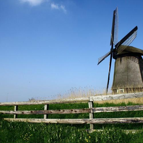 Molen and fence wallpaper