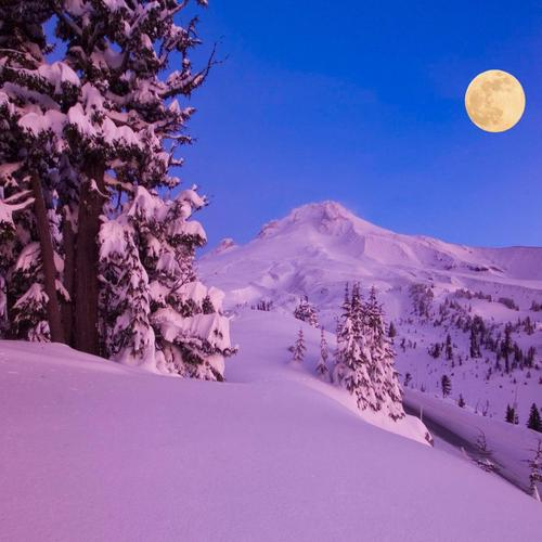 Moon light up winter night wallpaper
