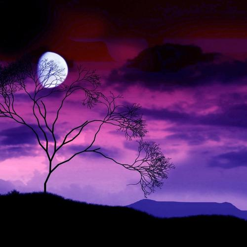 Moonlight in purple sky