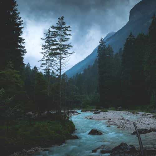mountain wood night dark river nature