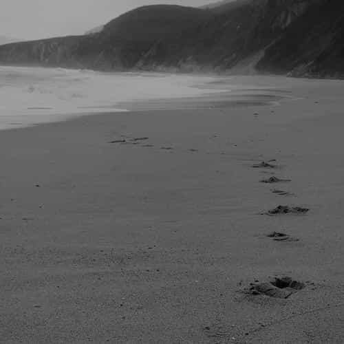 naked walk sea beach nature pure dark bw