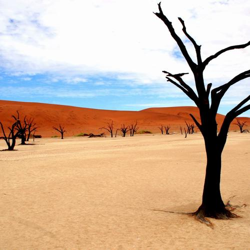 Download Namibia park desert High quality wallpaper