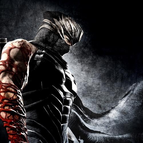 Ninja Gaiden 3 wallpaper