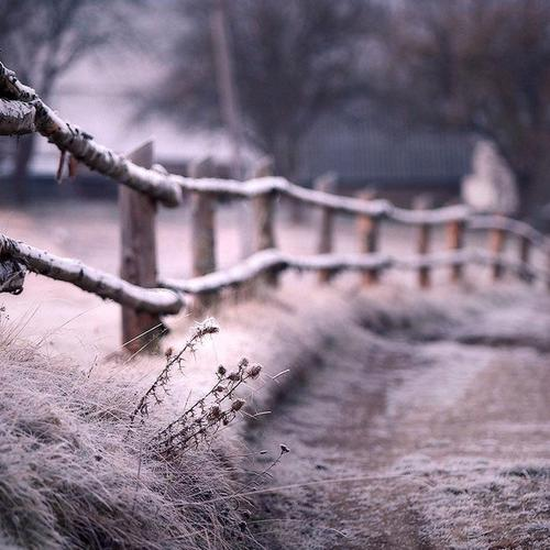 Old fence in winter wallpaper