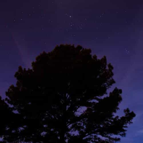 one star shine night dark blue sky wood