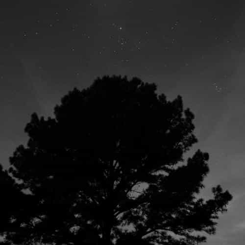 one star shine night dark sky wood bw