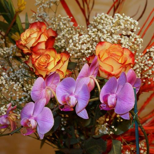 Orange Red Roses Orchids