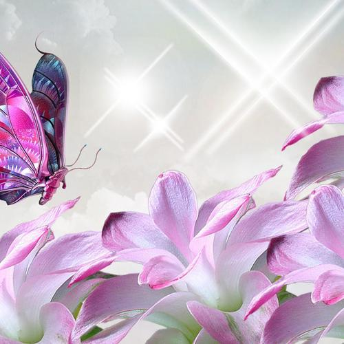 Pink butterfly and flower collage wallpaper