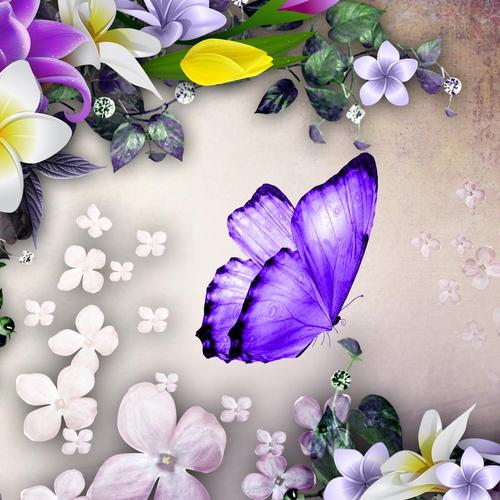 Purple butterfly and flowers collage