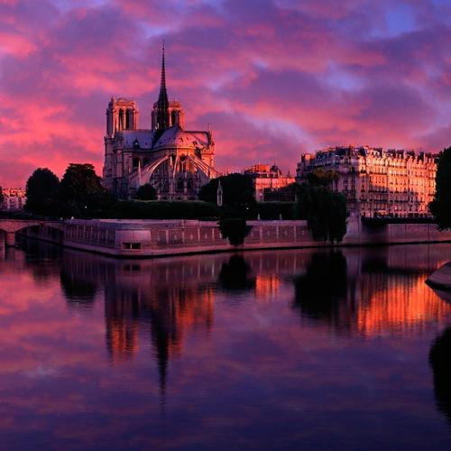 Purple sky in sunrise at Notre Dame