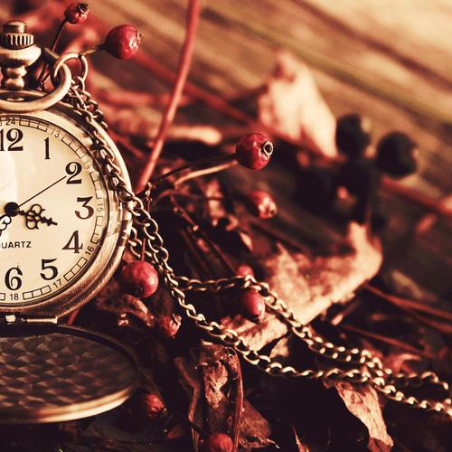 Quartz Pocket Watches and dried berries wallpaper