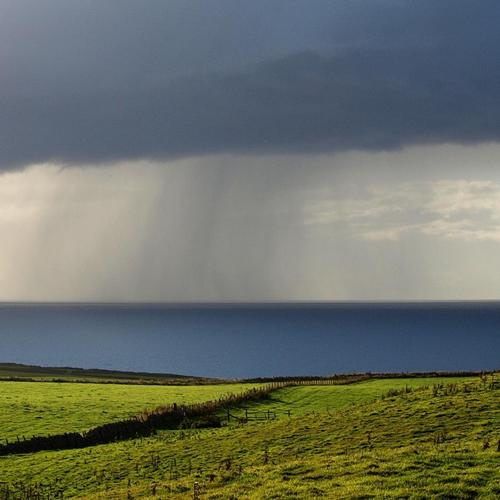 Rain off shore and green field