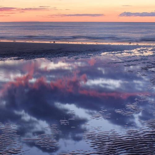 Reflection in a tidal pool