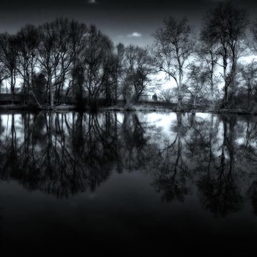 Reflections In A dark Pond wallpaper