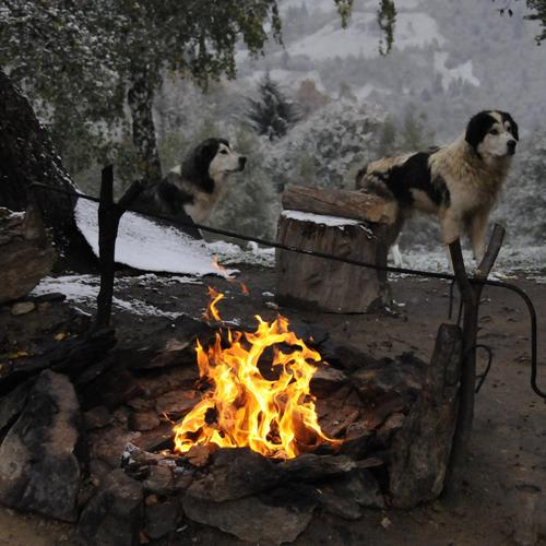 Romanian winter with camp fire