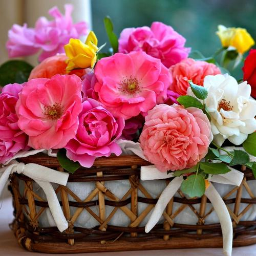 Roses basket wallpaper