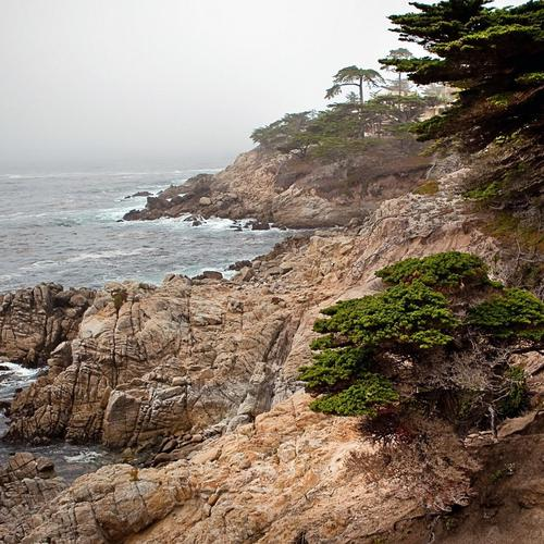 Rugged Rocky Misty Seashore