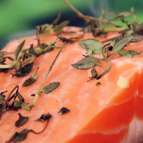 salmon food bokeh nature