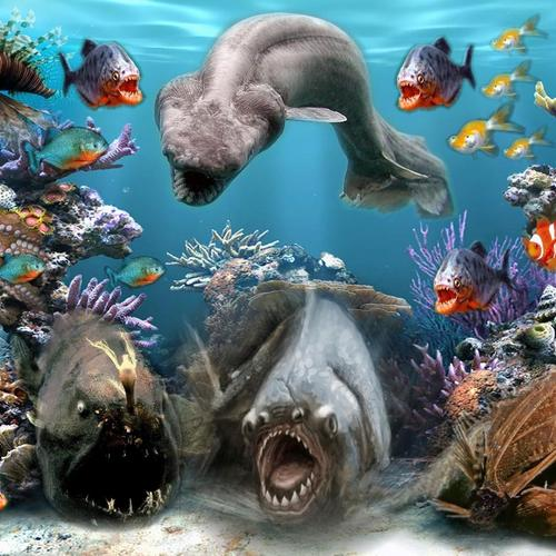 Sea Creatures wallpaper