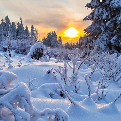 Setting sun over snowy landscape