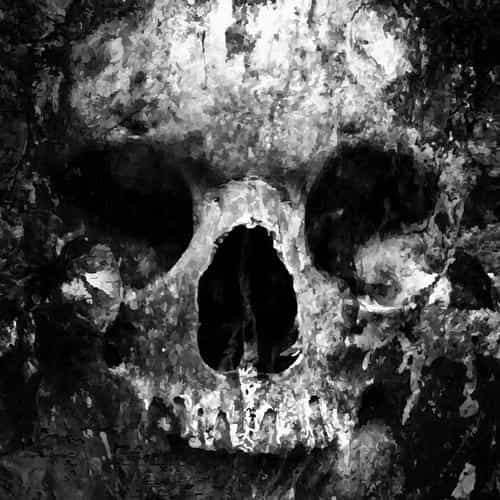 skull face ark paint illustration art bw dark