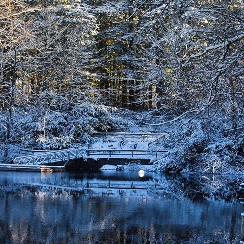 Small bridge over the lake in winter wallpaper