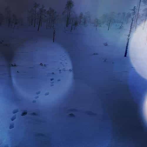 snow walk winter dark blue bokeh footprints nature mountain