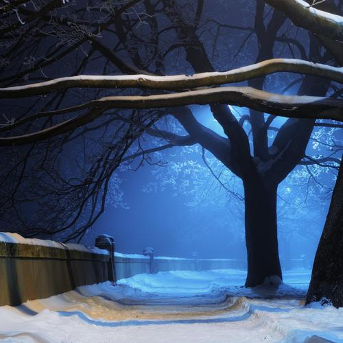 Snowy road in night