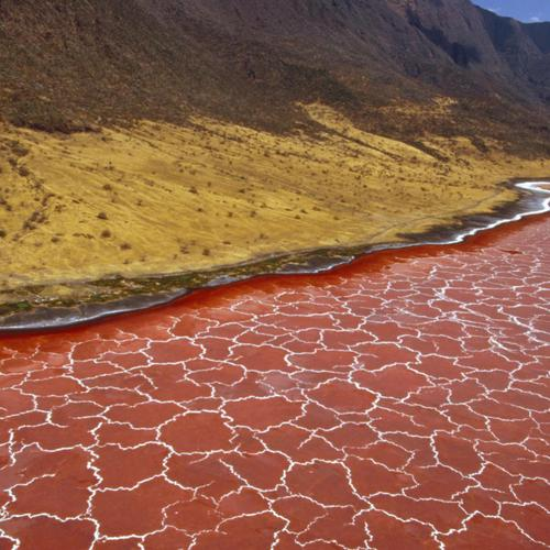 Soda Formation In Lake Natron Tanzania wallpaper