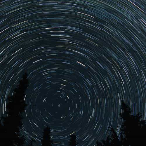 star trail tree space night nature