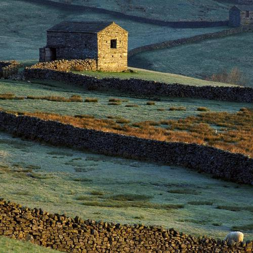 Stone walls in Yorkshire England wallpaper