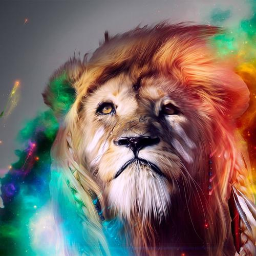 Stunning colorful Lion