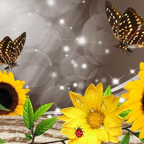 Sunflowers and butterflies collage