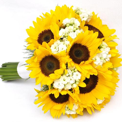 SunFlowers gift