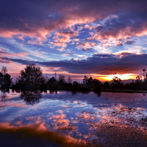 sunset lake night blue dark nature