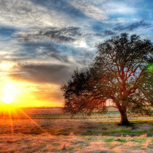 Sunset on a Texas farm Hdr wallpaper