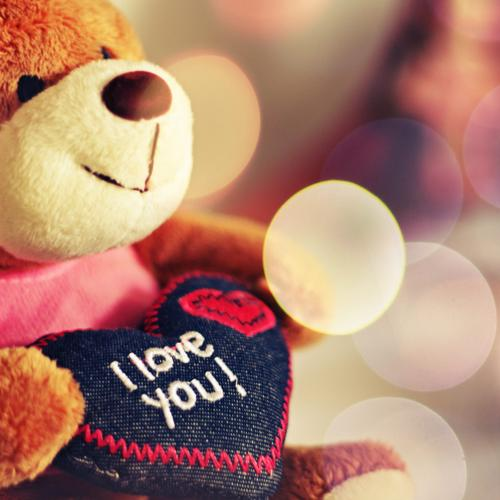 Teddy Bear - i love you wallpaper
