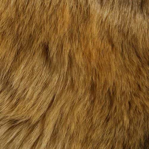 texture fur dog orange pattern gold