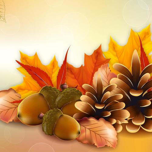 Thanksgiving fall vector wallpaper