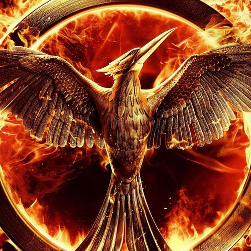 The Hunger Games movie Mockingjay bird wallpaper