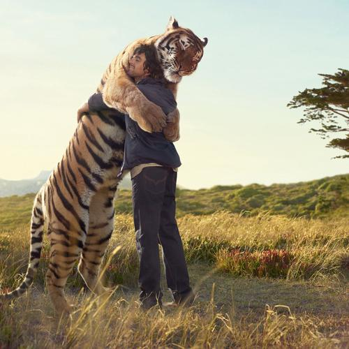 Tiger and man hug wallpaper