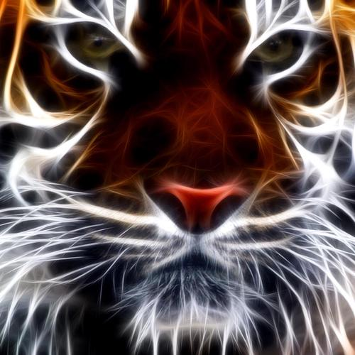 Tiger fractal wallpaper