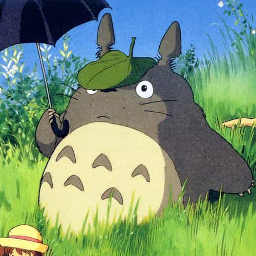 totoro art cute anime illustration