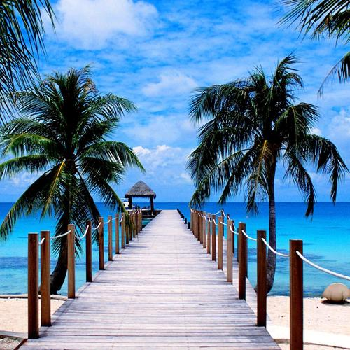 Tropical Beach Pier wallpaper