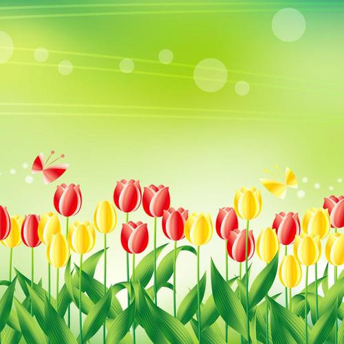 Tulip flowers in vector