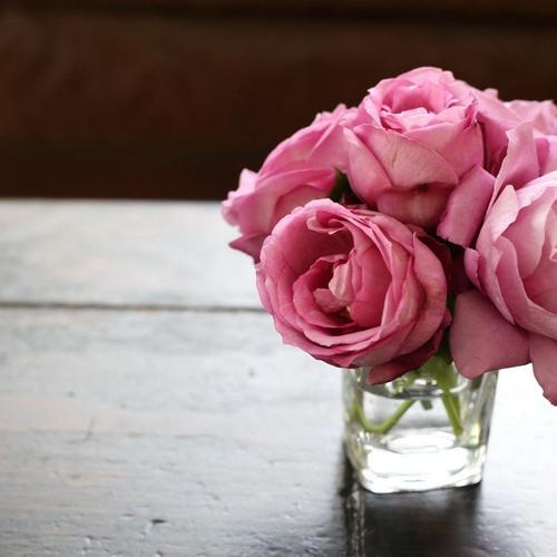 Vase Water Flowers Pink Roses wallpaper