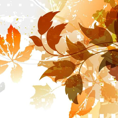 Vector fall foliage wallpaper
