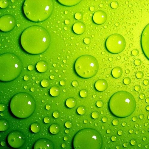 Waterdrops on green surface wallpaper